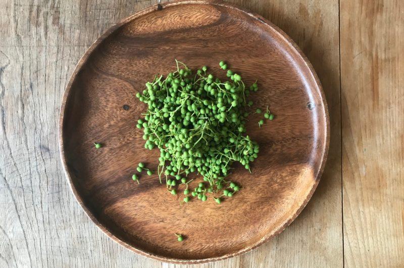 【きょうの料理】実山椒の水煮のレシピ【5月27日】