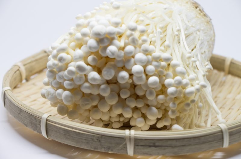 【あさイチ】トロトロえのきとサラダチキンとチーズの和え物のレシピ|魔法のえのきレシピ【9月1日】