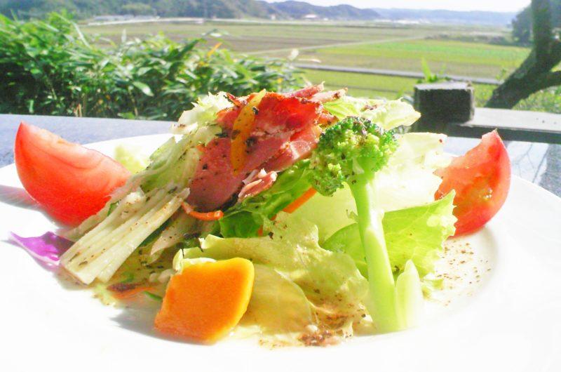 【あさイチ】柿と大根の甘酢和えのレシピ【9月29日】