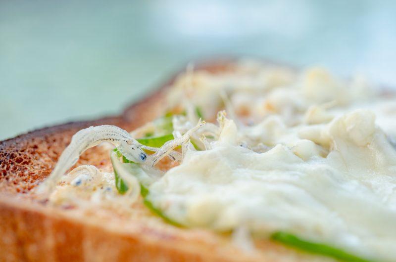 【ソクラテスのため息】海苔としらすの和トーストのレシピ|滝沢カレン【9月9日】