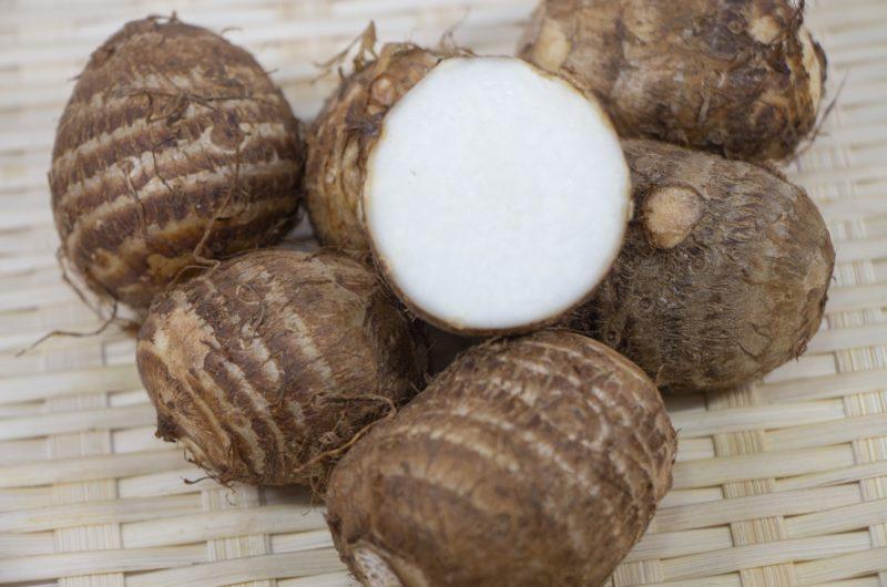 【きょうの料理】里芋とかにかまのマヨ卵焼きのレシピ【9月30日】