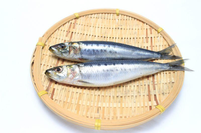 【あさイチ】いわしと菊の三杯酢のレシピ【9月9日】