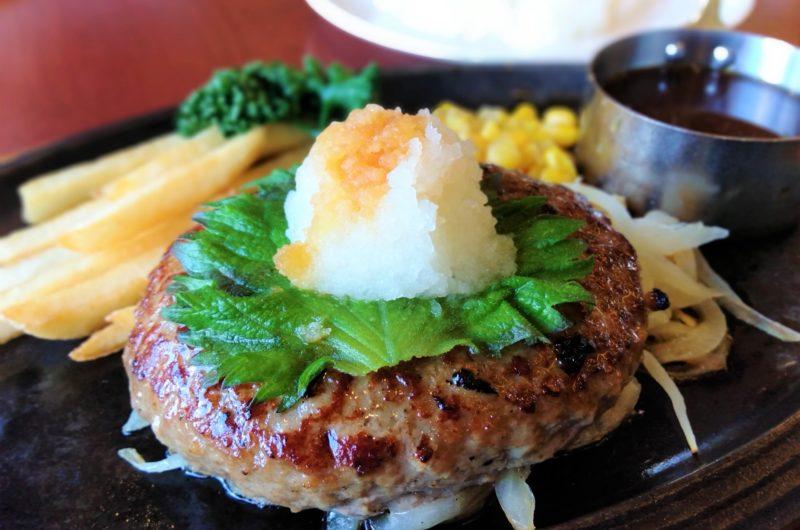 【きょうの料理】大豆氷で和風ハンバーグのレシピ【10月19日】