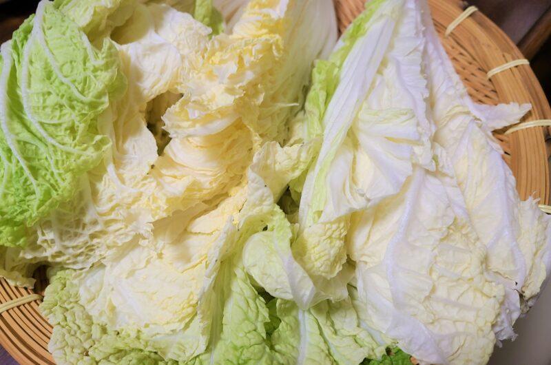 【青空レストラン】白菜ステーキのレシピ【1月30日】