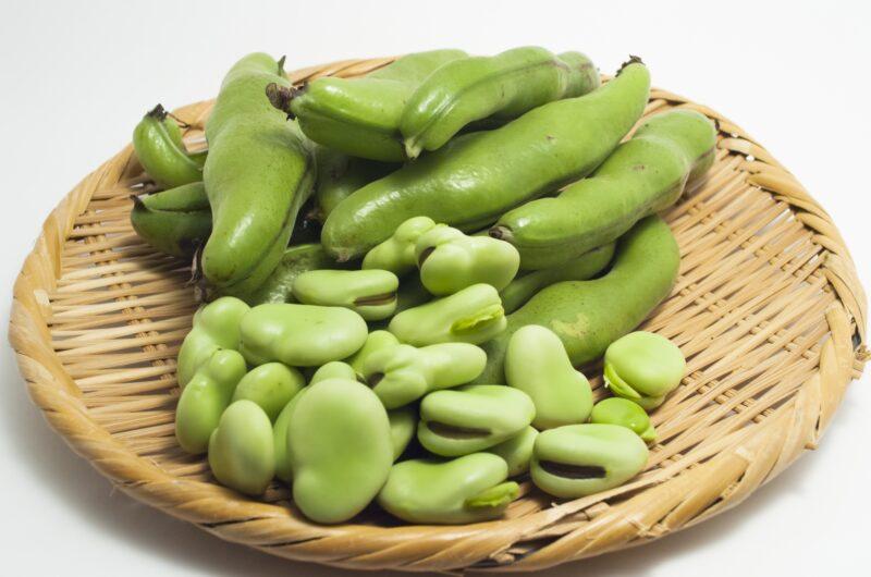 【ヒルナンデス】羽根つきそら豆のレシピ|業務スーパー【2月8日】