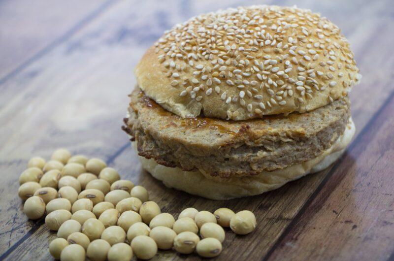 【鉄腕DASH】大豆ミートのハンバーグのレシピ【2月7日】