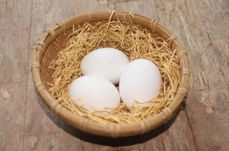 【ZIP】フレーバー卵のレシピ【2月25日】
