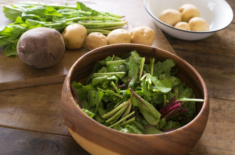 【きょうの料理】新じゃがと春キャベツのホットサラダのレシピ|どいちなつ【3月3日】