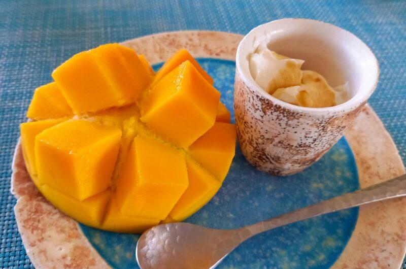 【家事ヤロウ】おかえりマンゴーのレシピ|おいでやすこが|IKKO【3月23日】
