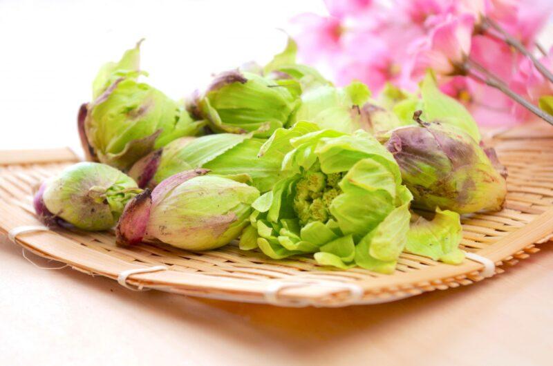 【きょうの料理】ふきのとうのパスタのレシピ|藤井恵【3月22日】