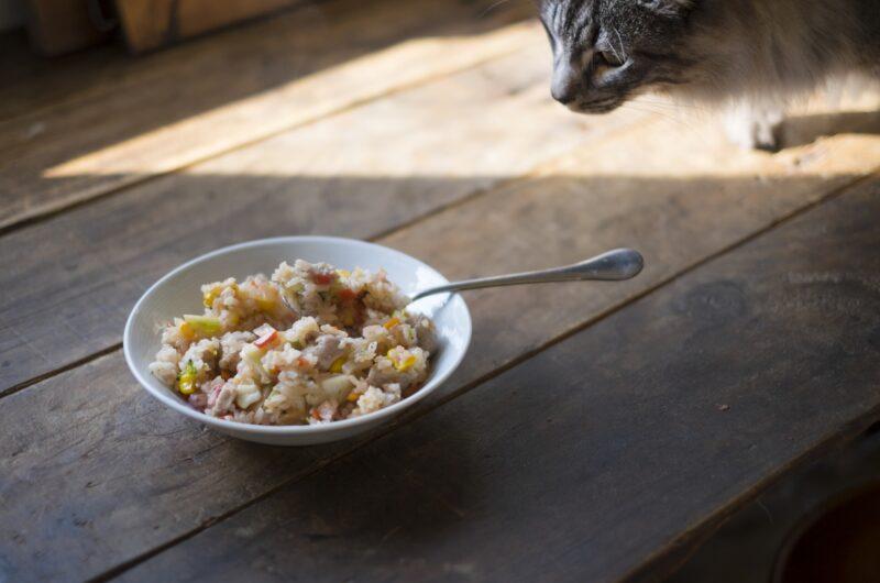 【おは朝】新玉ねぎの中華風冷や奴のレシピ|たっきーママ|おはよう朝日です【4月21日】