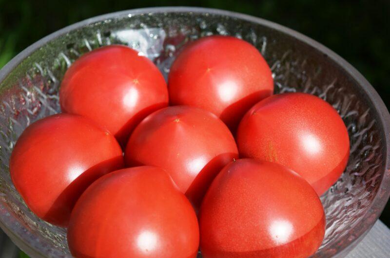【相葉マナブ】トマトの丸ごとグラタンのレシピ【5月30日】
