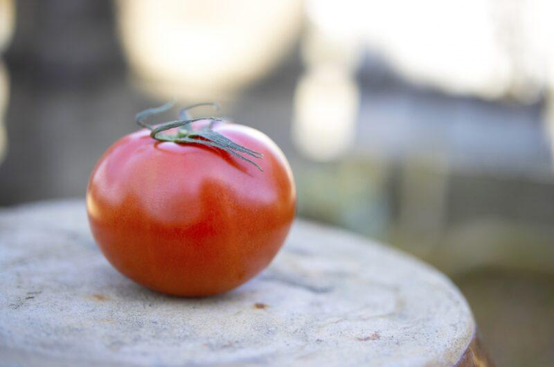 【相葉マナブ】万能トマトソースのレシピ【5月30日】