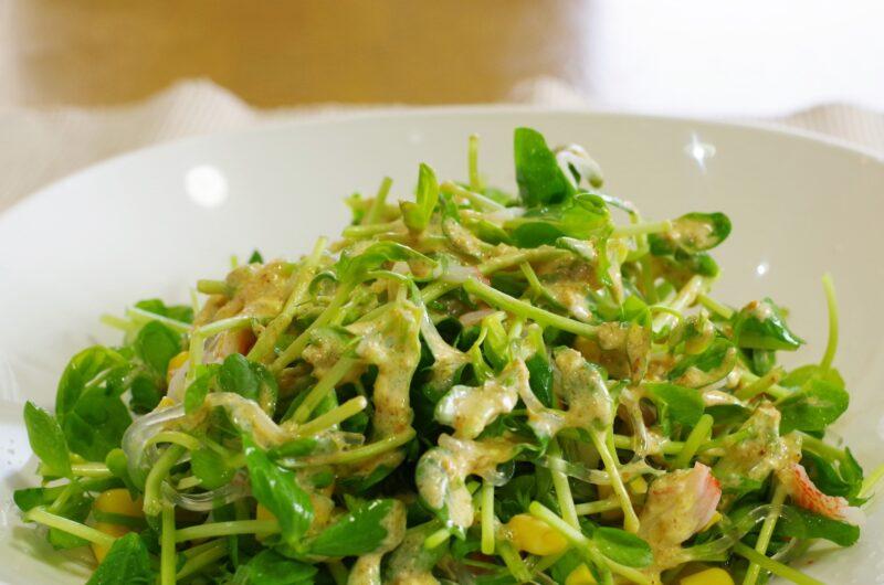 【サタプラ】豆苗とちくわの味噌ドレサラダのレシピ|和田明日香|サタデープラス【6月19日】