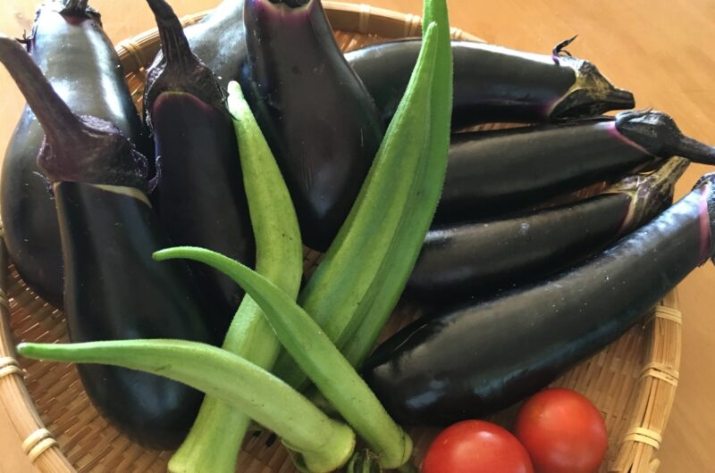 【きょうの料理】ヒラヒラなすとささみの夏うま煮のレシピ|小田真規子【6月28日】