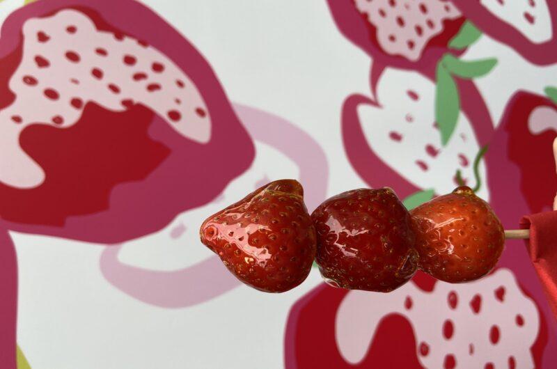 【ZIP】グミいちご飴のレシピ【6月17日】