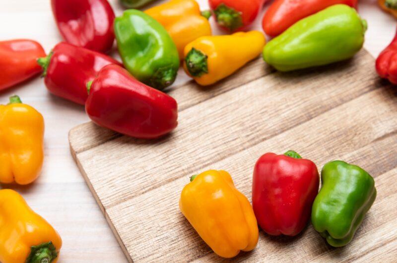 【ヒルナンデス】3色カラーピーマンの肉詰めのレシピ|長田知恵|ライバル食材徹底討論【9月8日】